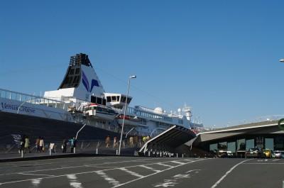 大さん橋客船ターミナルにて(3)