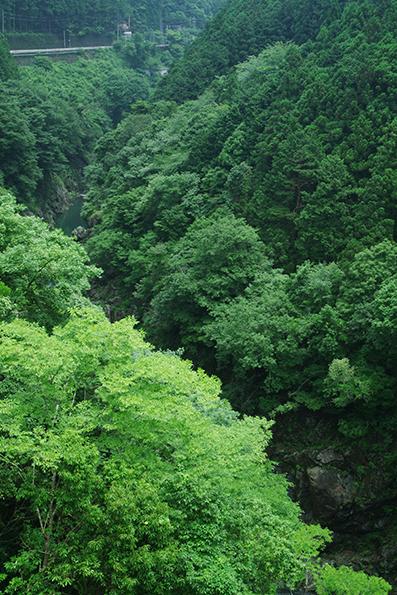 鳩ノ巣渓谷