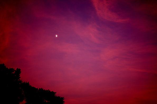 月(トイカメラ)