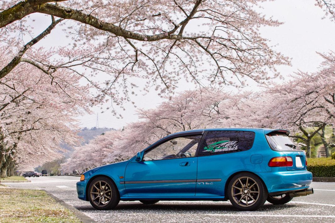 富士霊園にて桜と愛車EG6   PENTAX K-5IIs&FA★28-70mm