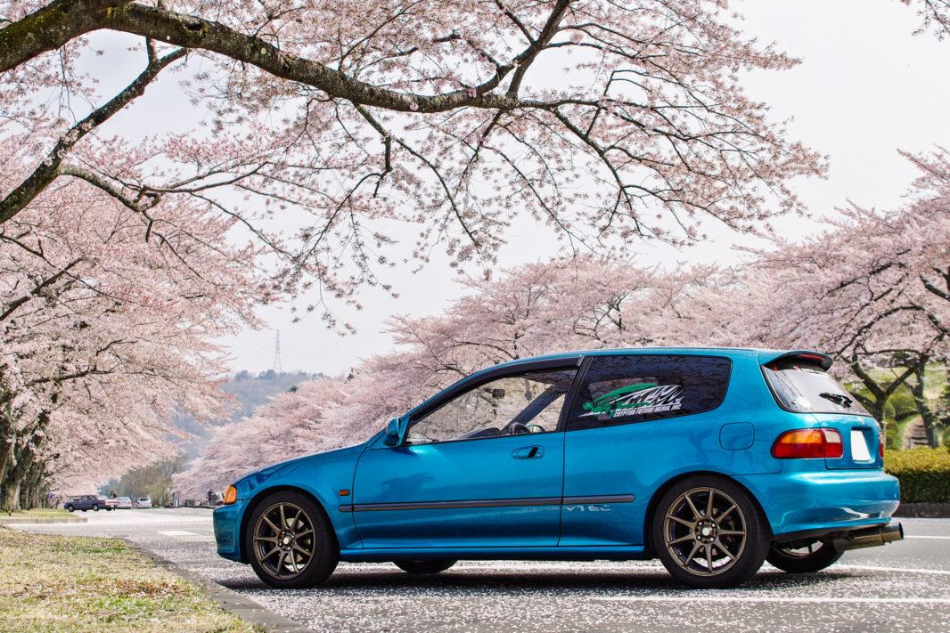 富士霊園にて桜と愛車EG6 | PENTAX K-5IIs&FA★28-70mm