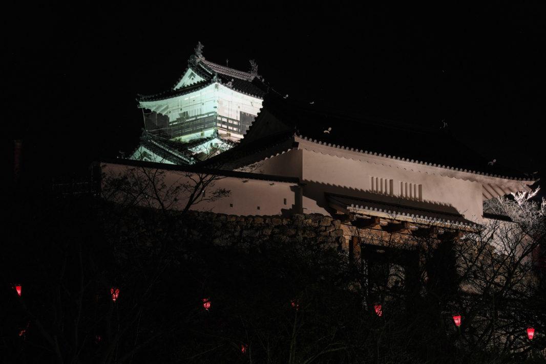浜松城の夜景 | PENTAX K-1&D FA★70-200mm