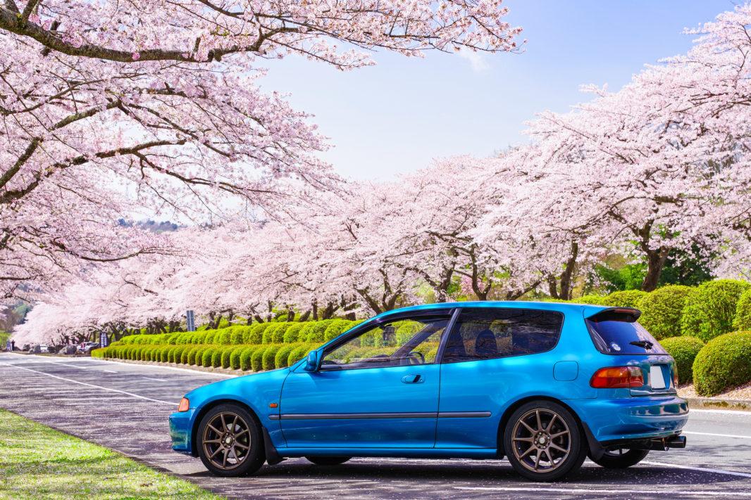 富士霊園の桜と愛車EG6   PENTAX K-1&D FA★70-200mm