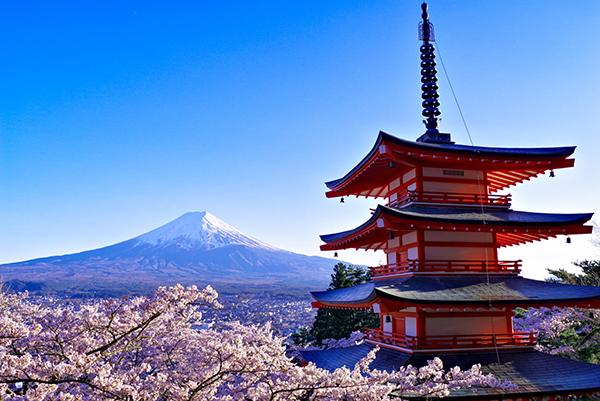 新倉山浅間公園より富士と桜と忠霊塔