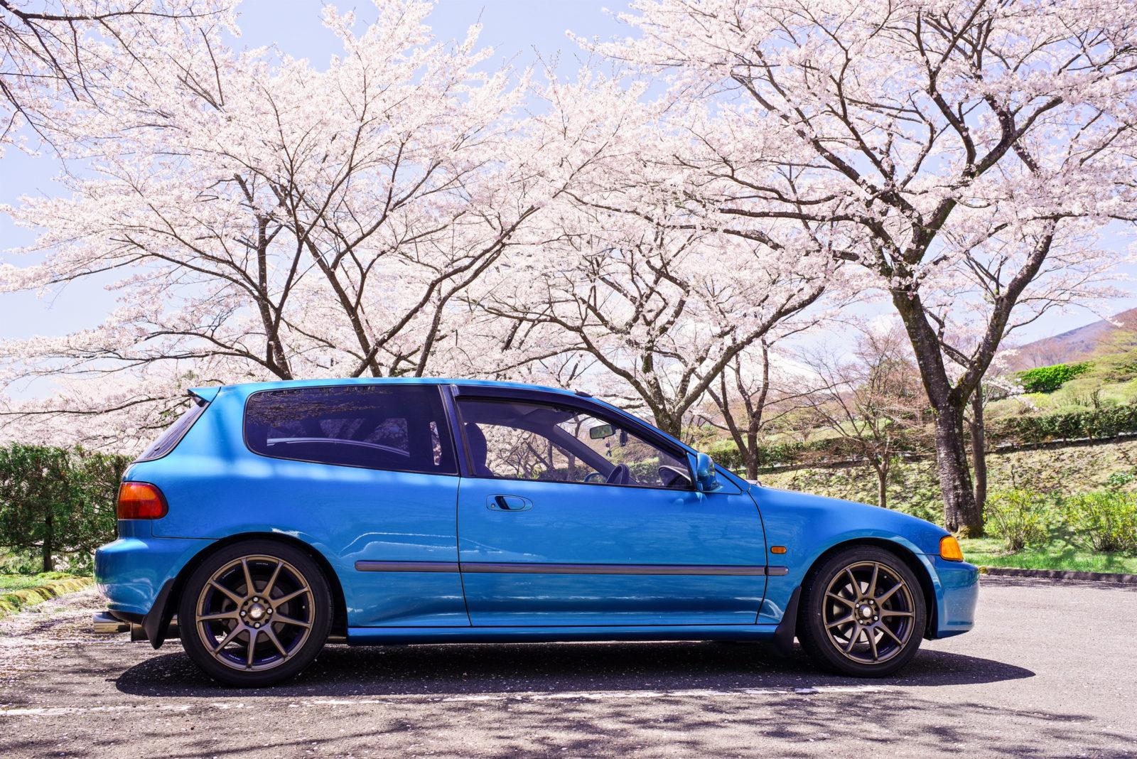 富士霊園の桜と愛車EG6 | PENTAX K-1&FA35mm