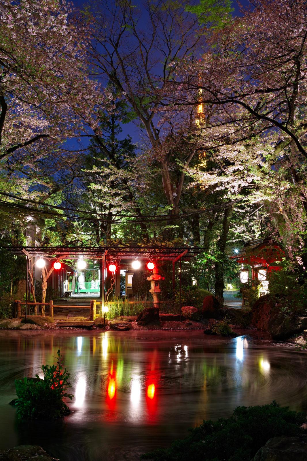 愛宕神社の桜 | PENTAX K-1&FA★28-70mm
