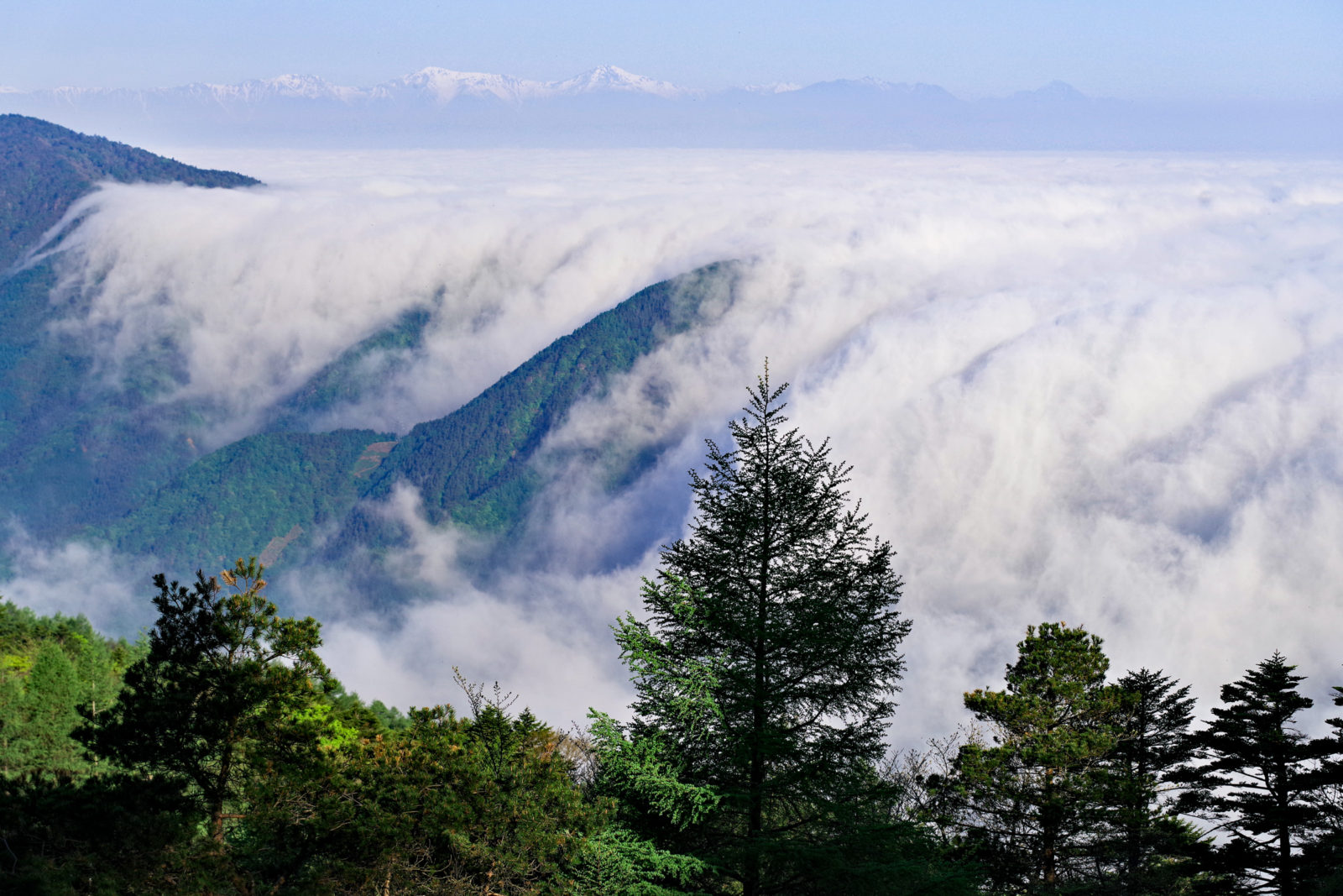 三ツ峠山より雲海 | PENTAX K-1&FA★28-70mm
