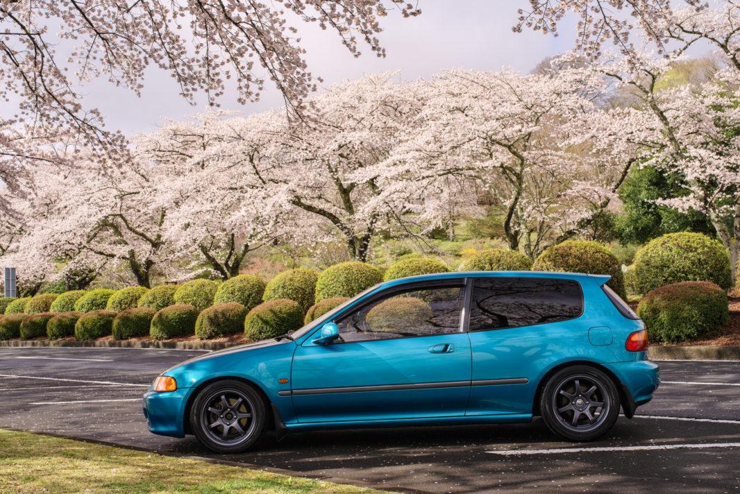 富士霊園の桜と愛車EG6 | PENTAX K-1&D FA★50mm