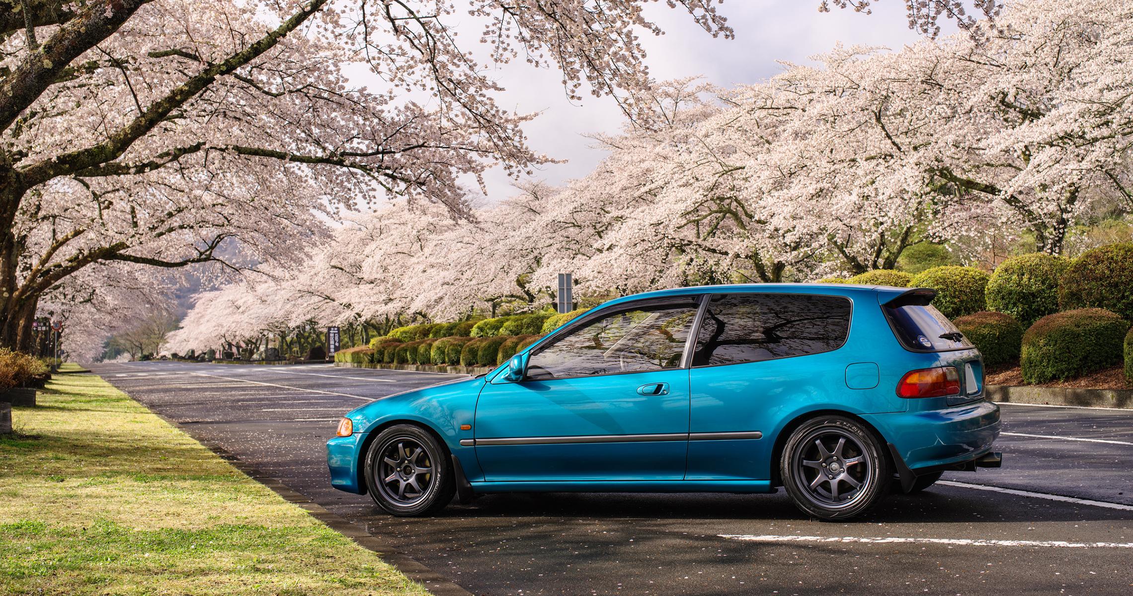 富士霊園の桜と愛車EG6 2019