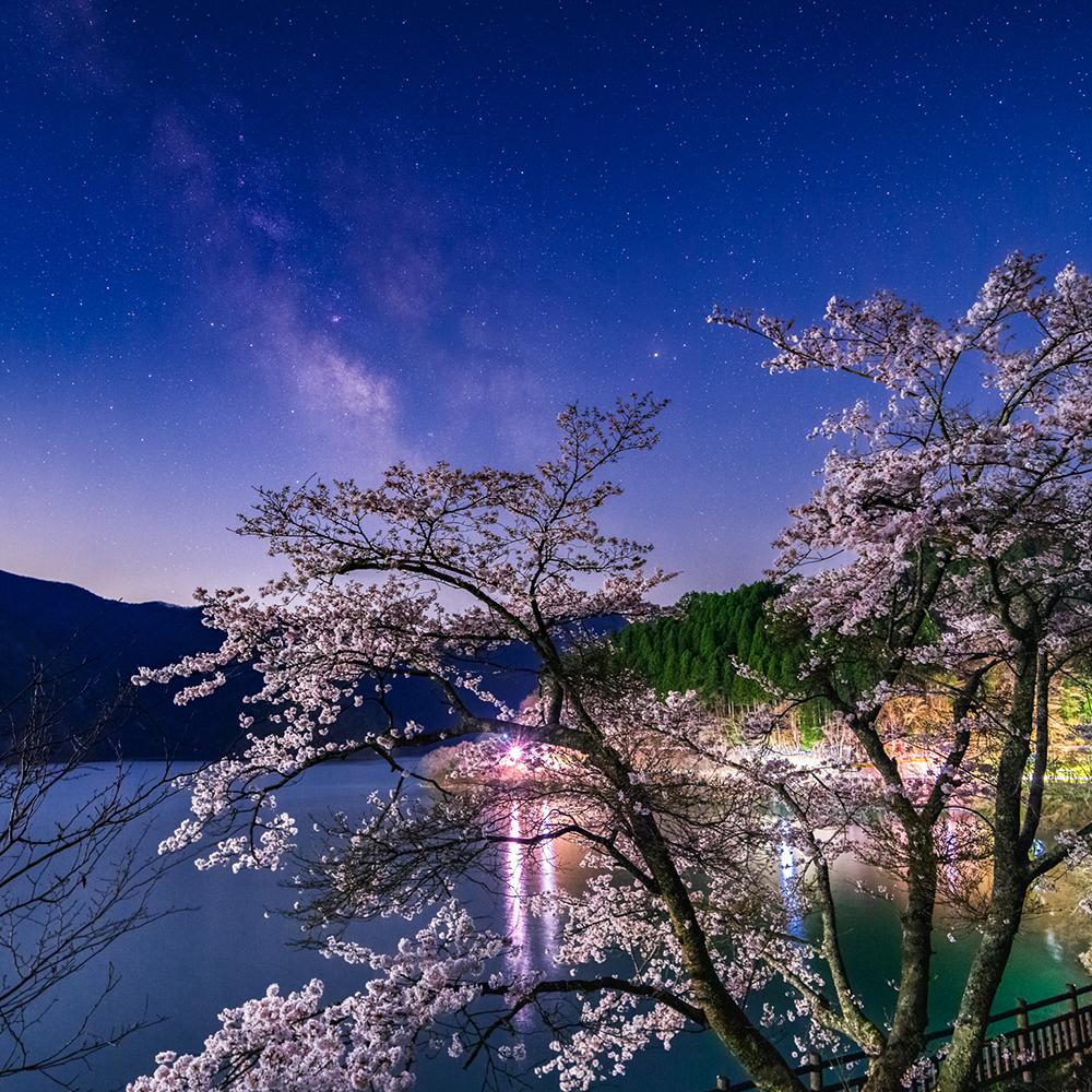 奥多摩湖の桜と天の川